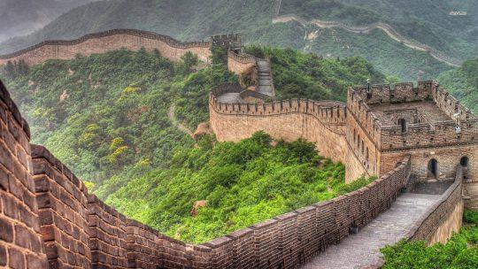 Universidade NOVA atribui bolsas para estudar na China