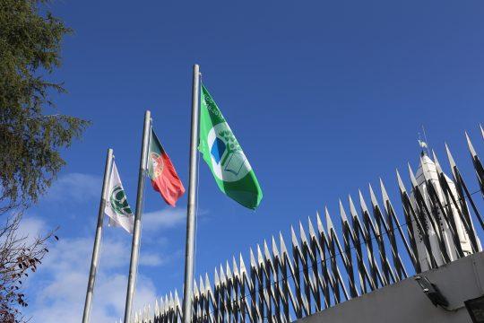Campus da NOVA FCSH renova distinção da Bandeira Verde