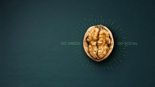 Sessão de Esclarecimento - Prémio Melhor Ideia de Negócio | Go Green Go Social
